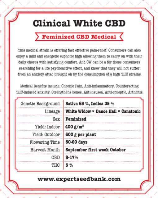 Clinical White CBD