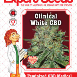 Clinical White CBD