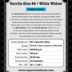 Gorrila Glue #4 × White Widow