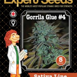 Gorrila Glue #4