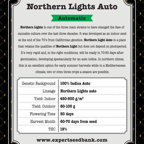 Northern Lights Automatic Cannabis Seeds