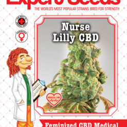 Nurse Lilly CBD