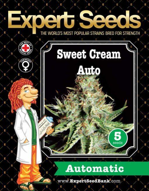 Sweet Cream Auto