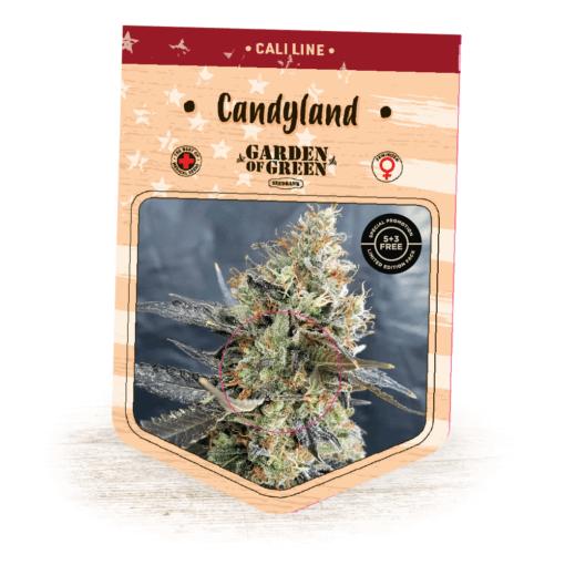 Candyland BULK