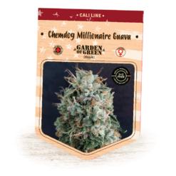 Chemdog Millionaire Guava Bulk