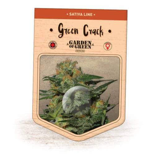 Green Crack