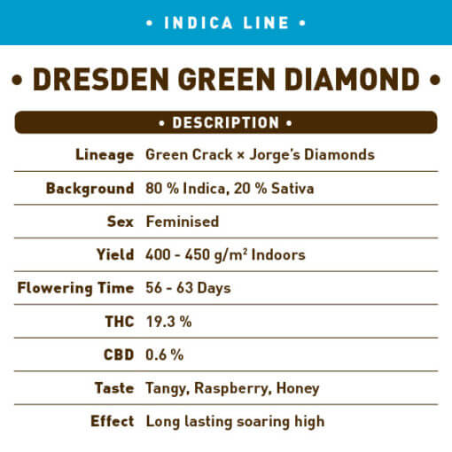 Dresden Green Diamond