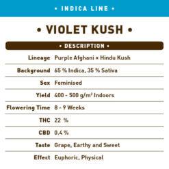 Violet Kush