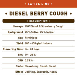 Diesel Berry Cough