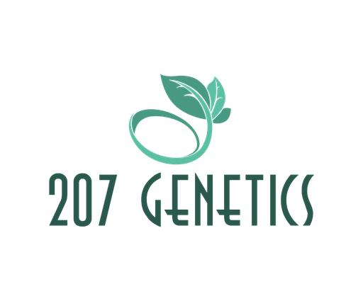 207 Logo